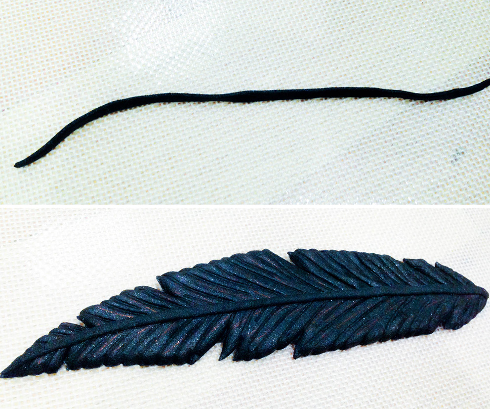 feathers04